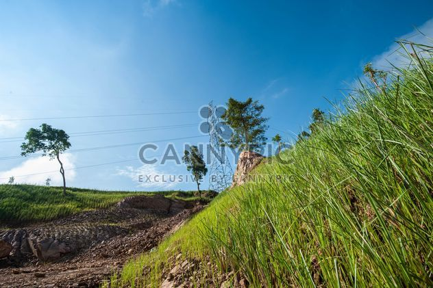 Green Slopes - Free image #328143