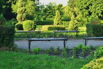 BenchesIn the summer Park - image gratuit #328433