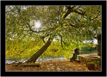 Autumn Rest, Original - Free image #329003