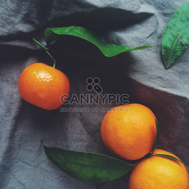 tangerine and green leaves on a blue background - бесплатный image #329213