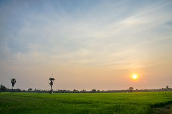 sunset on the field - image gratuit #330013
