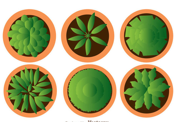 Plant On Pot Top View - vector gratuit #330753