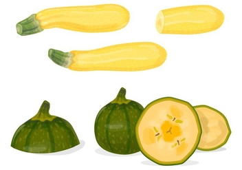 Green and yellow zucchini vectors - Free vector #332653