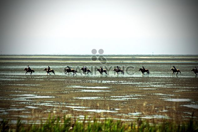 Horse riders running afar - Kostenloses image #332933
