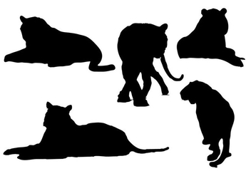 Free Tiger Silhouettes Vector - Free vector #333493