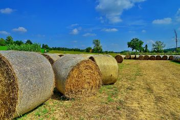 Countryside agriculture - бесплатный image #333743
