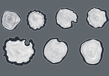 Hand Drawn Tree Ring Vector - Free vector #335513