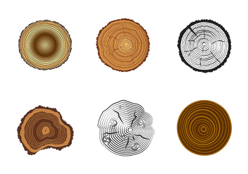 Free Tree Rings Vector - бесплатный vector #336003