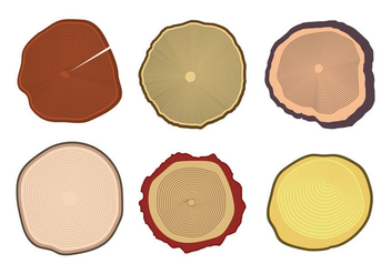 Tree Rings Vector - vector #336113 gratis