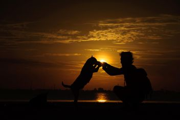 Man and dog at sunset - image #338593 gratis