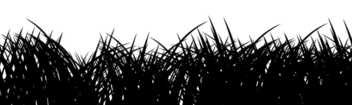 Grass Silhuoette - Free vector #338873