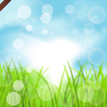 Summer Bokeh Background - vector gratuit #340043