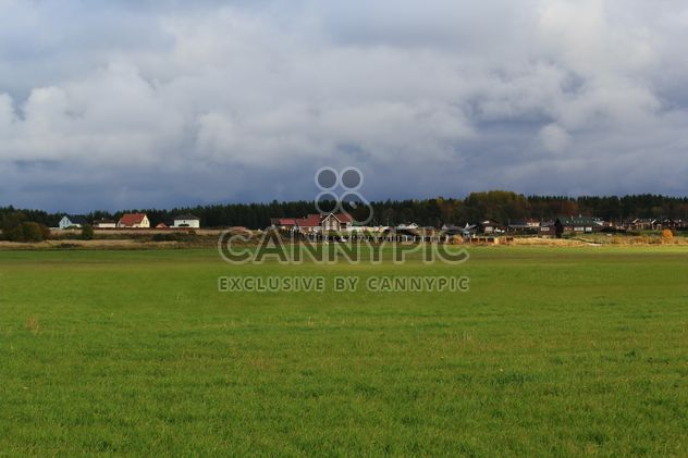 Field at countryside - бесплатный image #344183