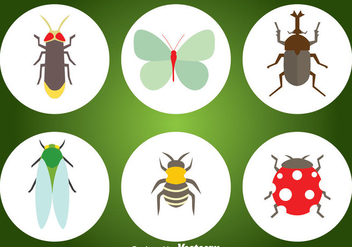 Insect Flat Icons - vector #344323 gratis