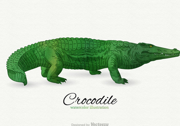 Free Crocodile Vector Illustration - vector gratuit #344683