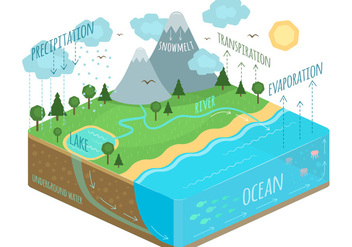 Water cycle - vector gratuit #344783