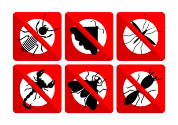 Vector Set of Insects - Kostenloses vector #345533