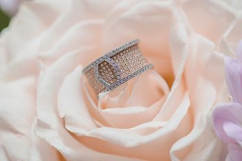 Closeup of beautiful ring on rose - image gratuit #346603