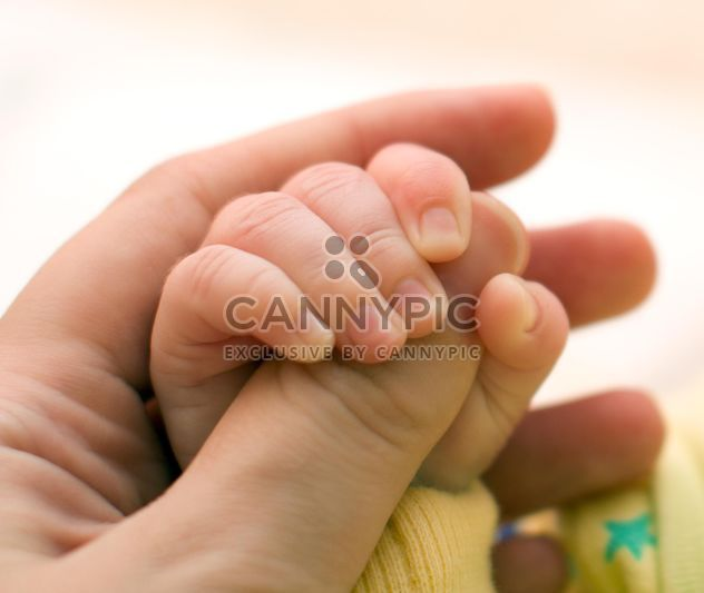 Baby's hand holding mother's hand - Free image #347013
