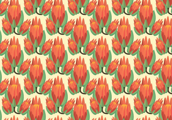 Free Protea Pattern Vector - Free vector #347373