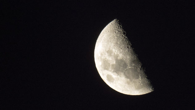Last Night's Moon - Free image #347893