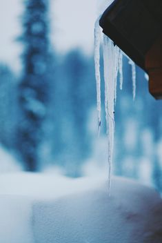 Closeup of icicle on roof in winter - бесплатный image #348643