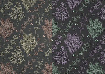 Vector Mimosa Patterns - vector gratuit #350003