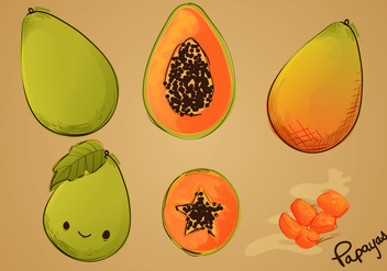 Sketched Papaya Vector Set - vector gratuit #350073