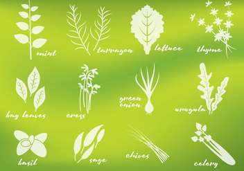 Fresh Greens Vectors - vector gratuit #353633