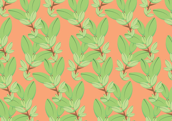 Free Thyme Vector Pattern #2 - vector #354343 gratis