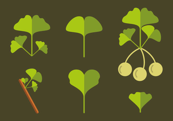 Ginko Illustration Vector - Free vector #356973