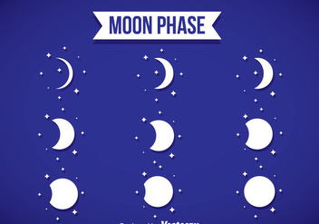 Moon Phase White Icons - Free vector #358423