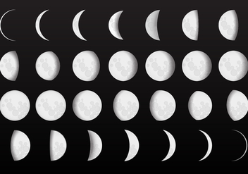 Complete Moon Phase Vectors - Free vector #359053