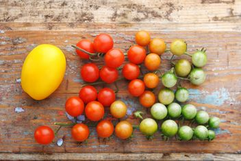 Fresh cherry tomatoes - image gratuit #359153