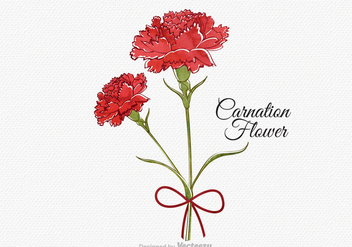 Free Vector Watercolor Carnation Flower - Free vector #359313
