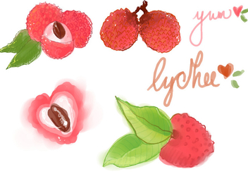 Watercolor Lychee Vector Set - Free vector #359743