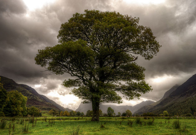 Buttermere Lake - Lake District - Kostenloses image #360363