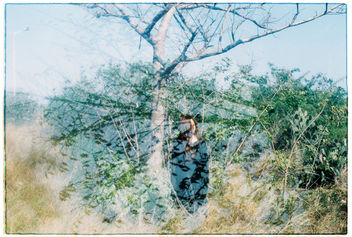Film #swap with Amy Chu - image gratuit #361463