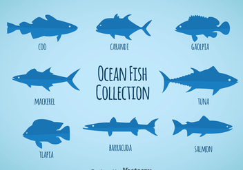 Ocean Fish Collection Vector - vector gratuit #362143