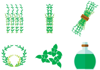 Thyme Vector - Free vector #364123