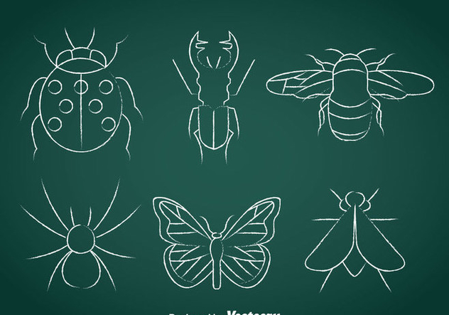Insects Chalk Drawn Icons - Kostenloses vector #366393