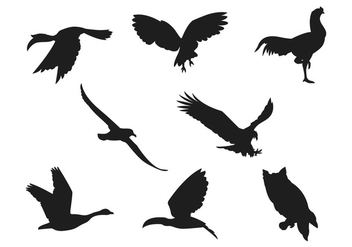 Bird Silhouette Collections - vector gratuit #367213