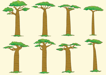 Baobab Tree - vector gratuit #368633