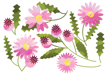 Vector Watercolor Daisy Flower Elements - vector gratuit #369903