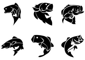 Bass Fish Silhoutte Vector - Free vector #370063