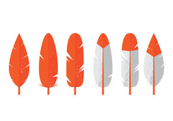 Vector Feathers - vector gratuit #370123