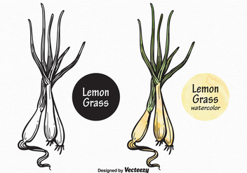 Free Vector Lemon Grass - vector gratuit #372463