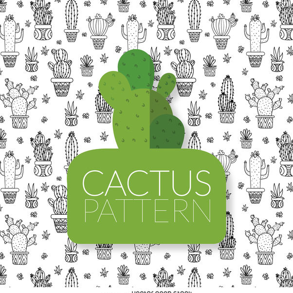 Cactus drawing pattern - Free vector #373073