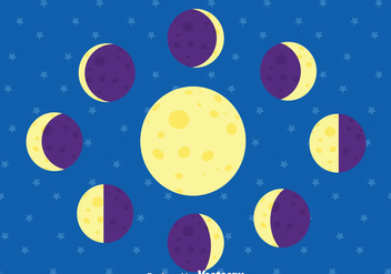 Moon Phase Vector - Free vector #373673