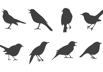 Free Nightingale Vectors - vector #374763 gratis